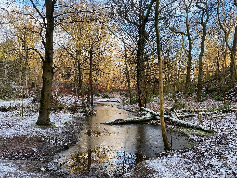Dawsholm Park