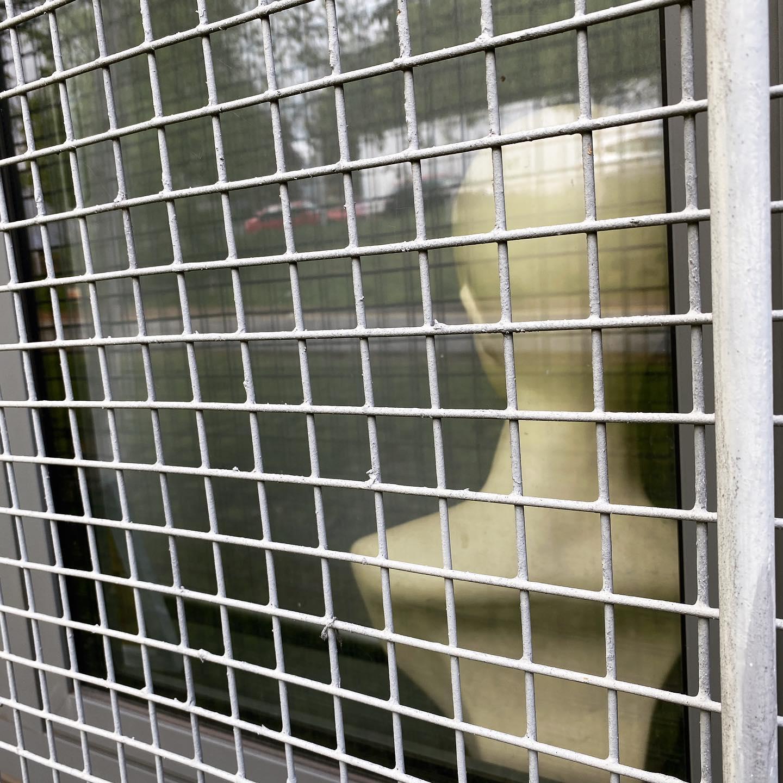 Caged Head